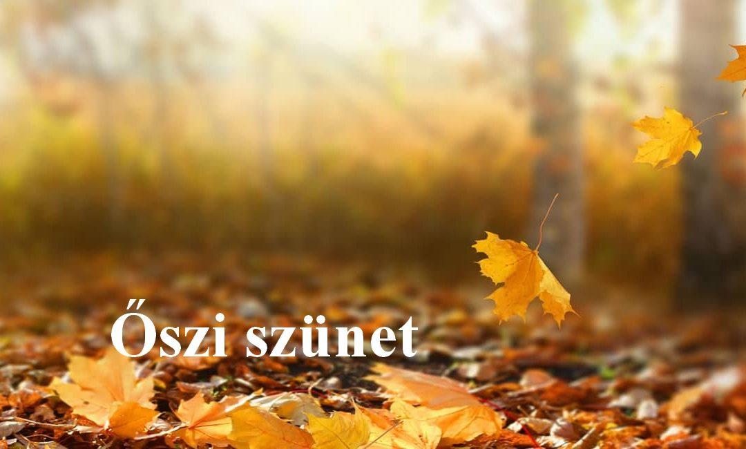 Ügyelet az őszi szünetben